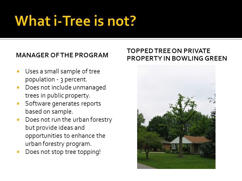 What i-Tree is not Topped Tree on private property in bowling green