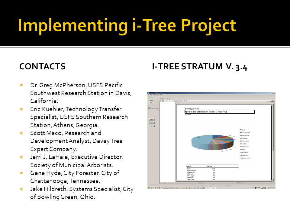 Implementing i-Tree Project