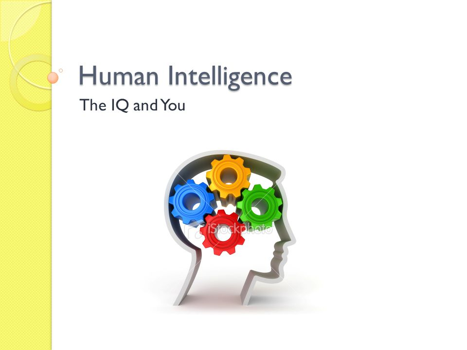 Human Intelligence The IQ and You