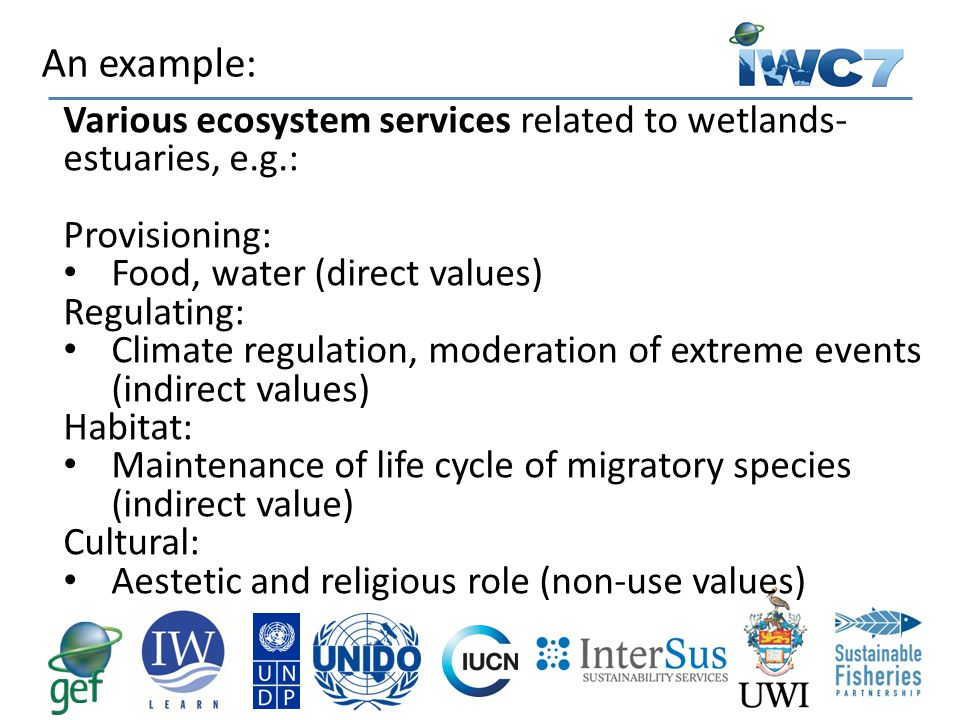 An example: Various ecosystem services related to wetlands-estuaries, e.g.: Provisioning: Food, water (direct values)