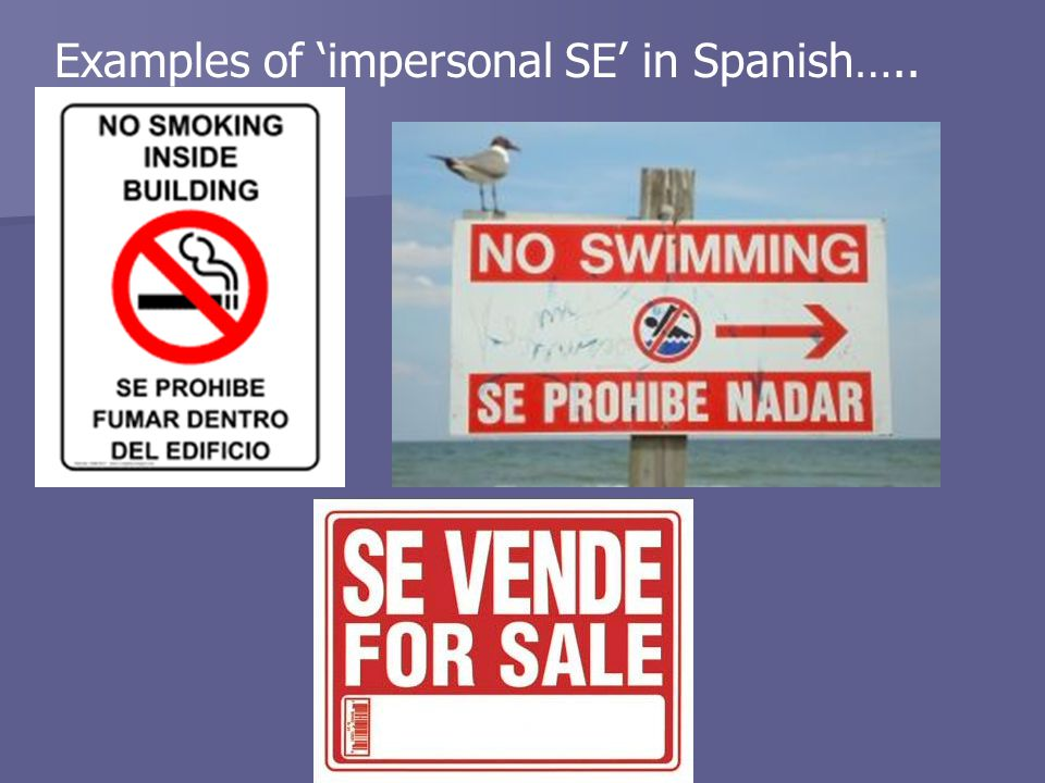 Examples of 'impersonal SE' in Spanish…..