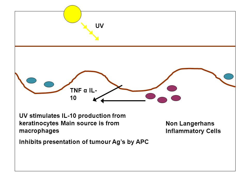Inhibits presentation of tumour Ag's by APC