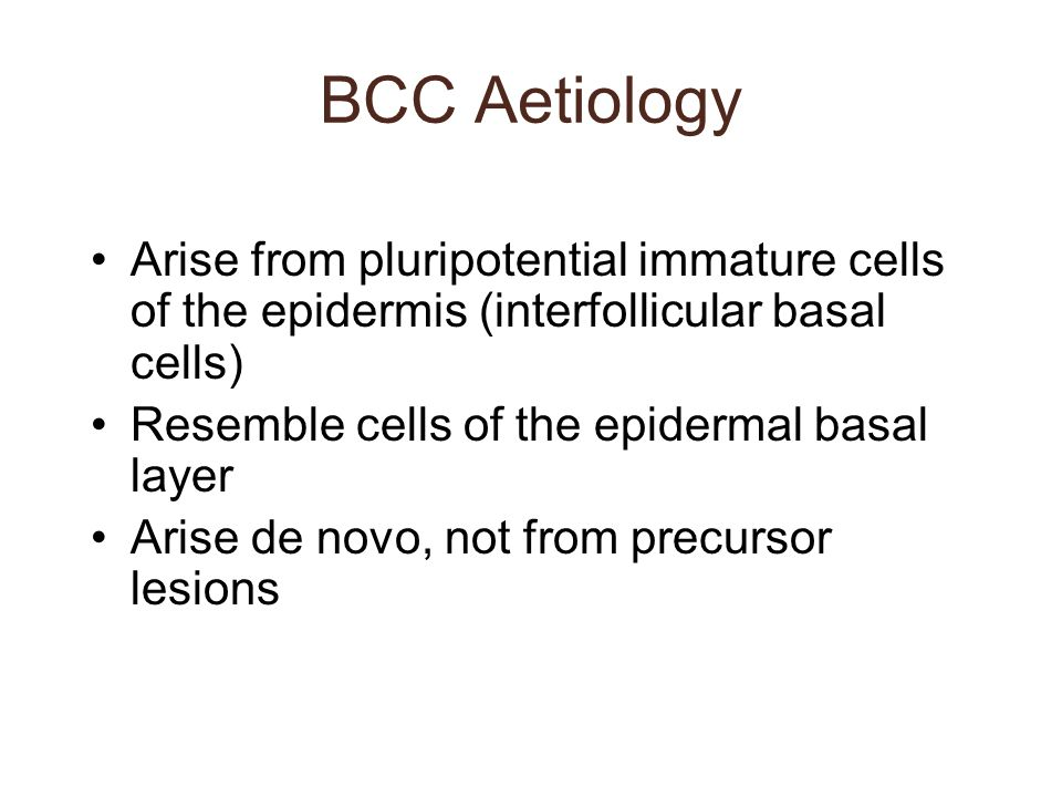 BCC Aetiology Arise from pluripotential immature cells of the epidermis (interfollicular basal cells)