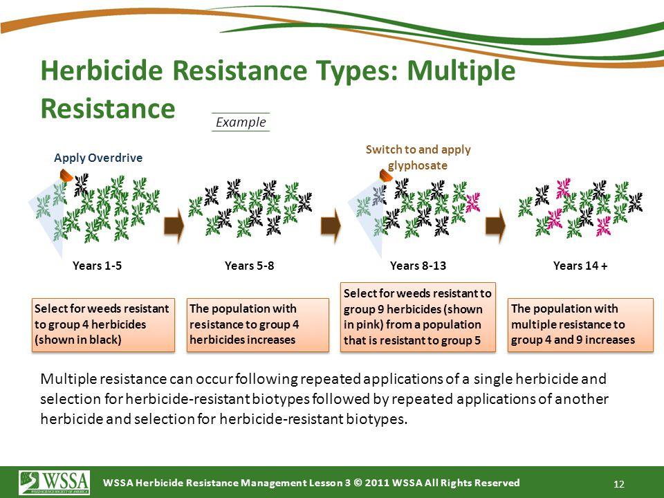 Herbicide Resistance Types: Multiple Resistance