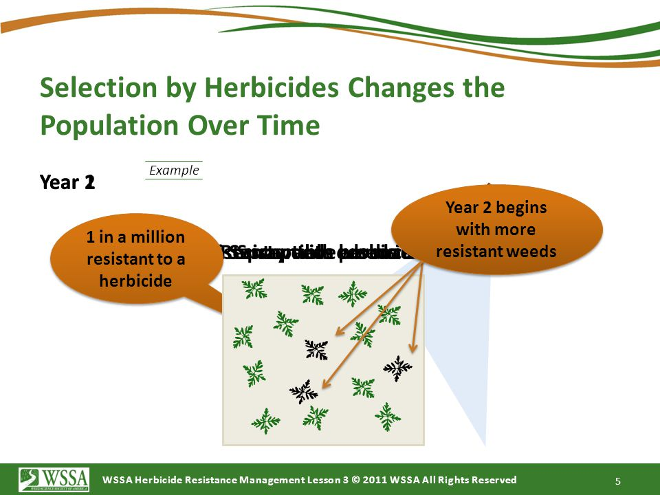 Selection by Herbicides Changes the Population Over Time