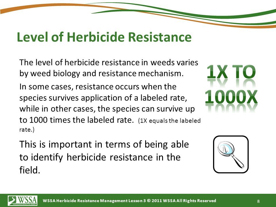 Level of Herbicide Resistance