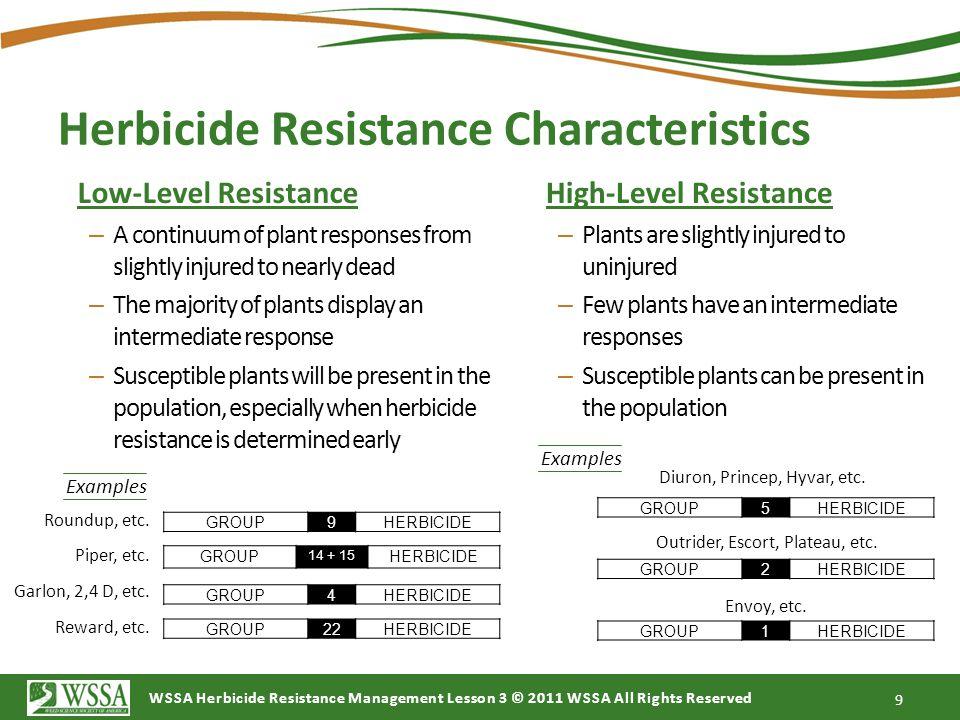 Herbicide Resistance Characteristics