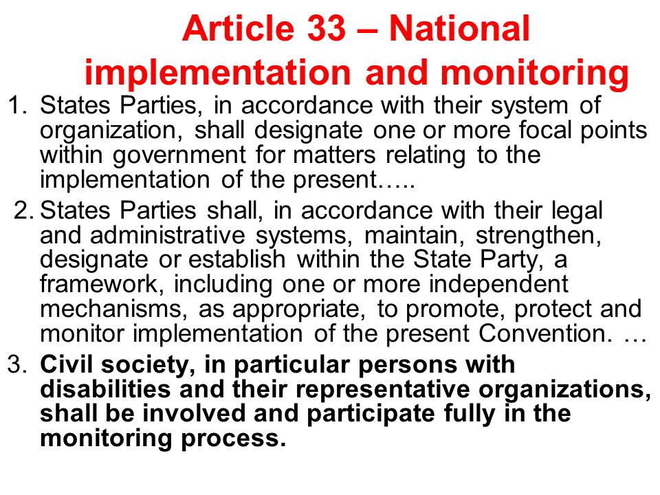 Article 33 – National implementation and monitoring