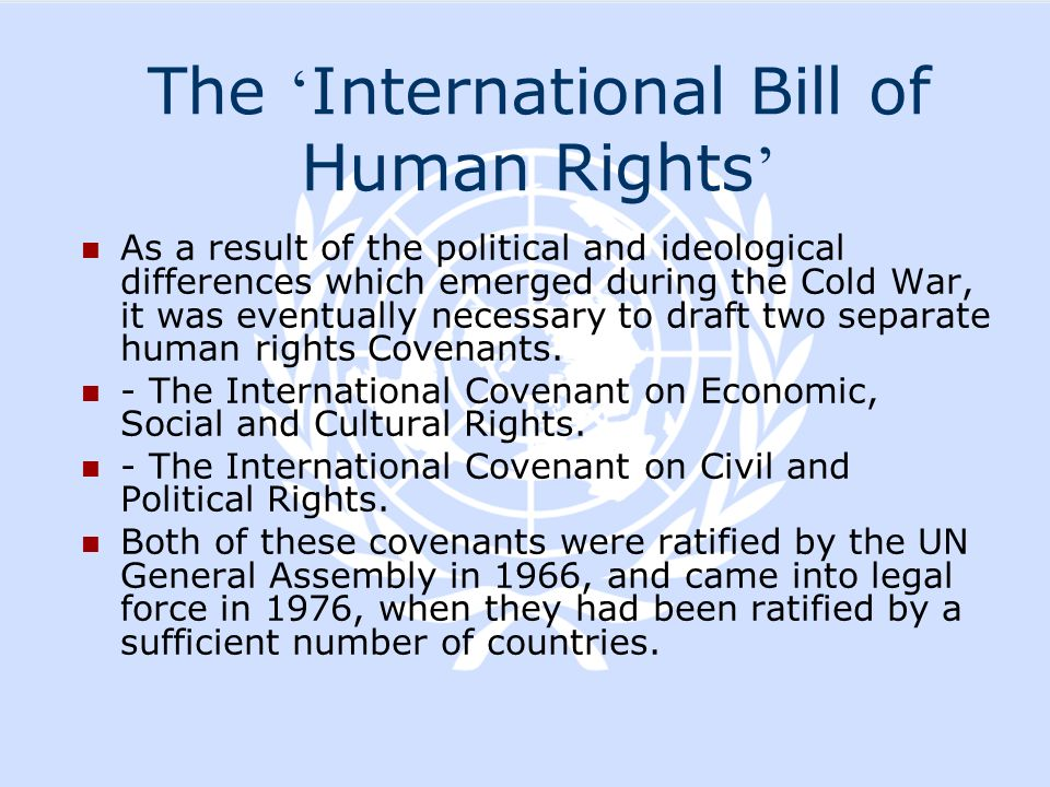 The 'International Bill of Human Rights'