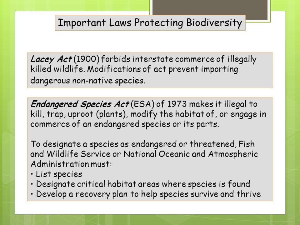 Important Laws Protecting Biodiversity