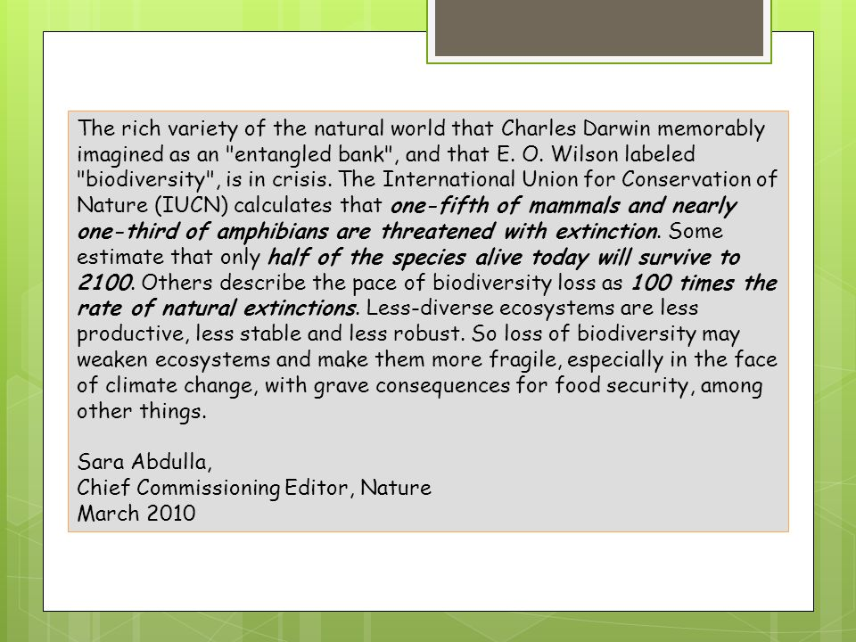 The rich variety of the natural world that Charles Darwin memorably imagined as an entangled bank , and that E. O. Wilson labeled biodiversity , is in crisis. The International Union for Conservation of Nature (IUCN) calculates that one-fifth of mammals and nearly one-third of amphibians are threatened with extinction. Some estimate that only half of the species alive today will survive to 2100. Others describe the pace of biodiversity loss as 100 times the rate of natural extinctions. Less-diverse ecosystems are less productive, less stable and less robust. So loss of biodiversity may weaken ecosystems and make them more fragile, especially in the face of climate change, with grave consequences for food security, among other things.