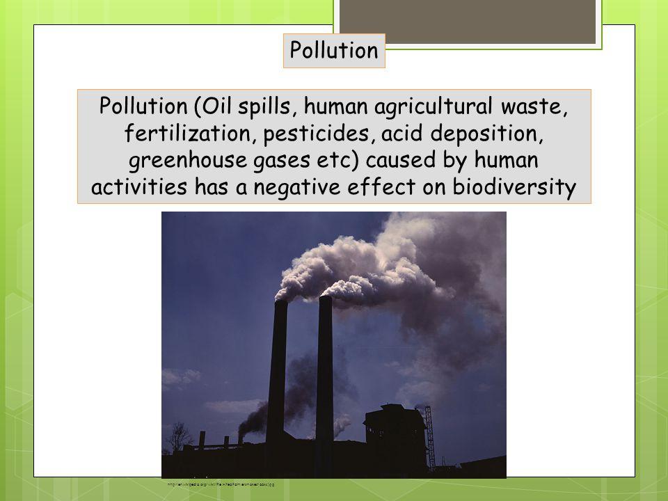 Negative effect of pesticides
