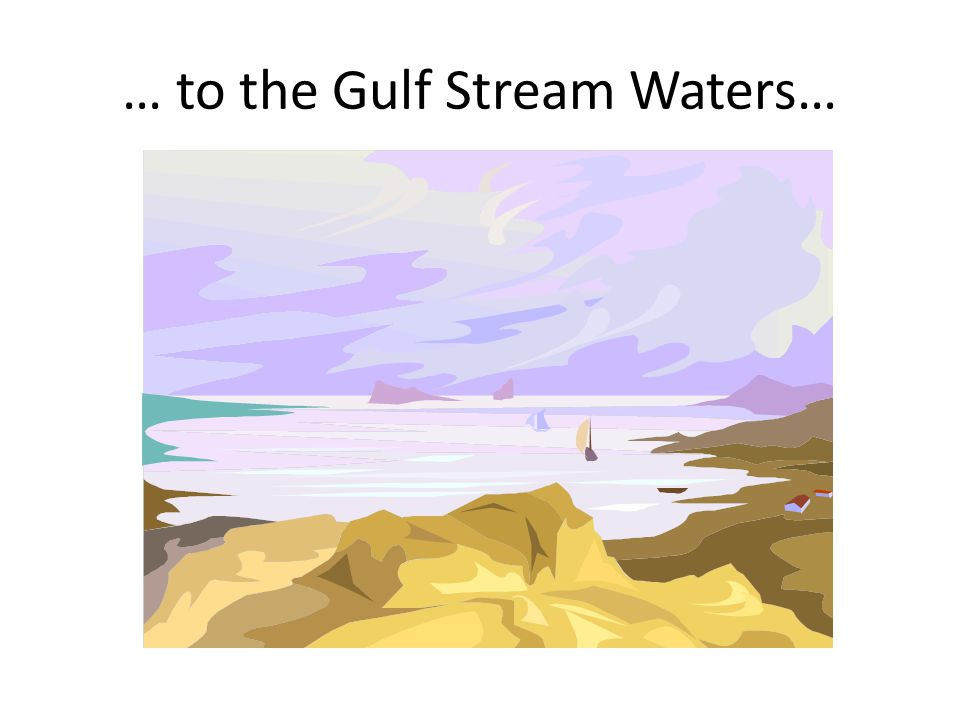 … to the Gulf Stream Waters…