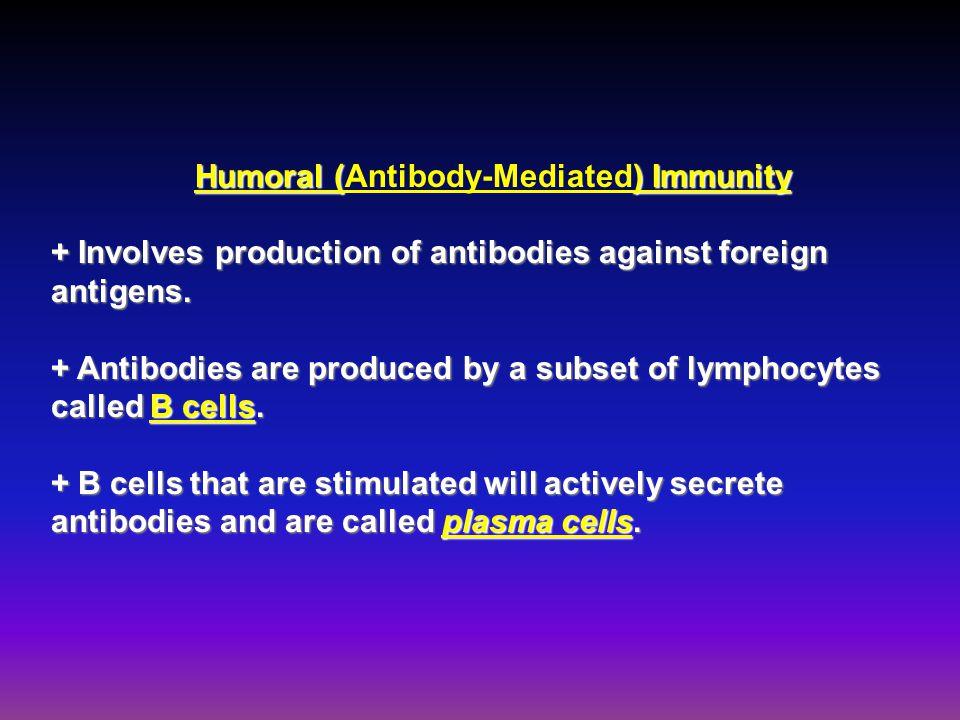 Humoral (Antibody-Mediated) Immunity