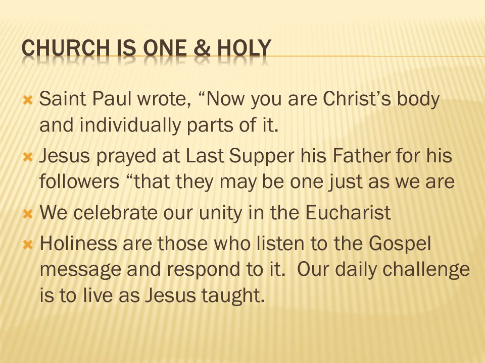 Church is One & Holy Saint Paul wrote, Now you are Christ's body and individually parts of it.