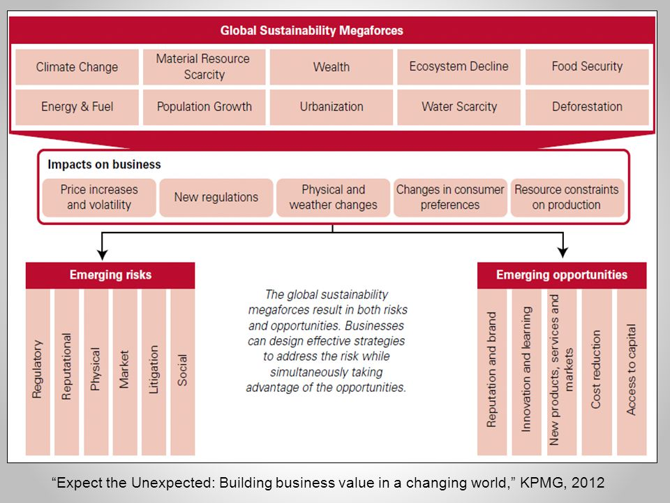 Expect the Unexpected: Building business value in a changing world, KPMG, 2012
