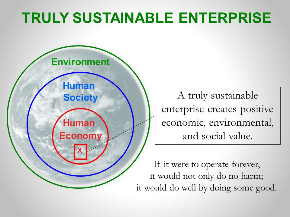 TRULY SUSTAINABLE ENTERPRISE