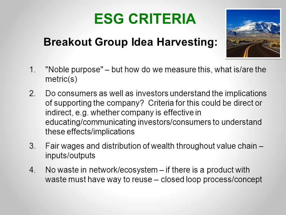 ESG CRITERIA Breakout Group Idea Harvesting: