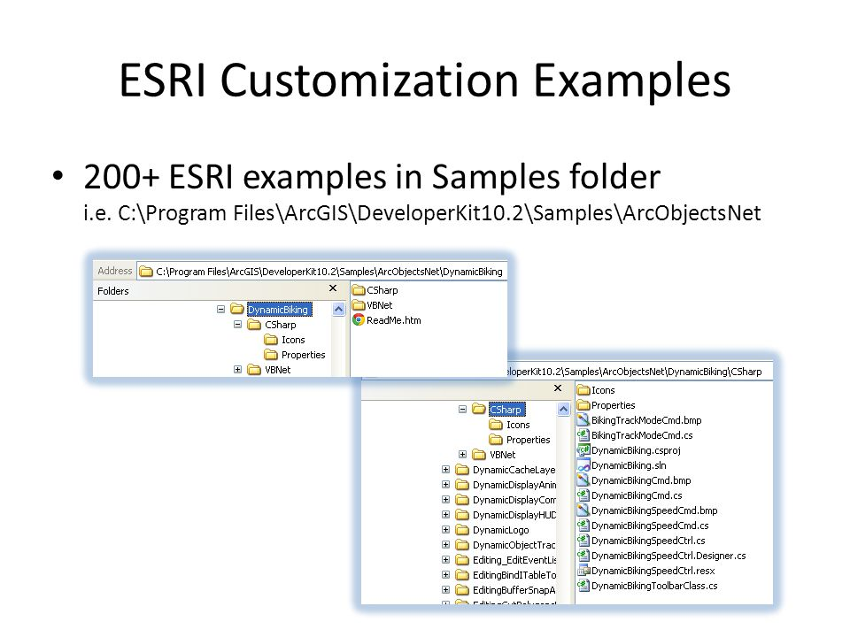 ESRI Customization Examples