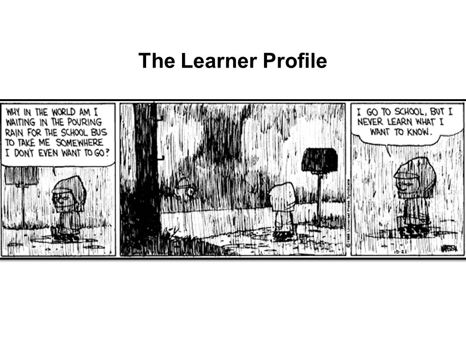 The Learner Profile