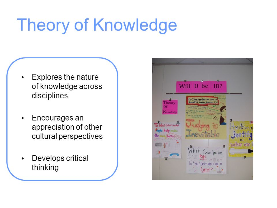Theory of Knowledge Explores the nature of knowledge across disciplines. Encourages an appreciation of other cultural perspectives.