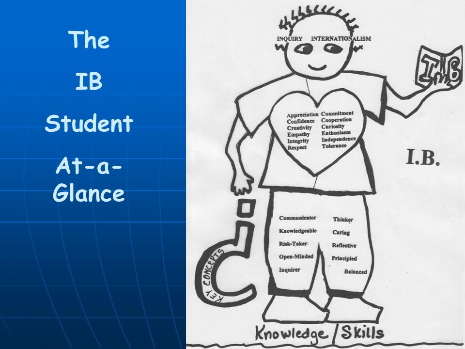 I The IB Student At-a-Glance