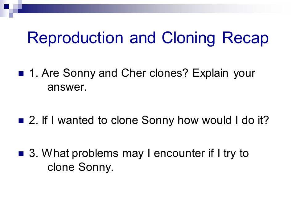 Reproduction and Cloning Recap