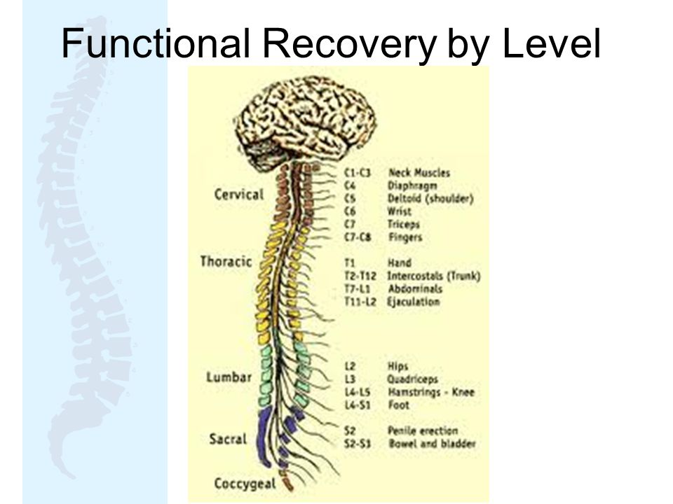 Functional Recovery by Level