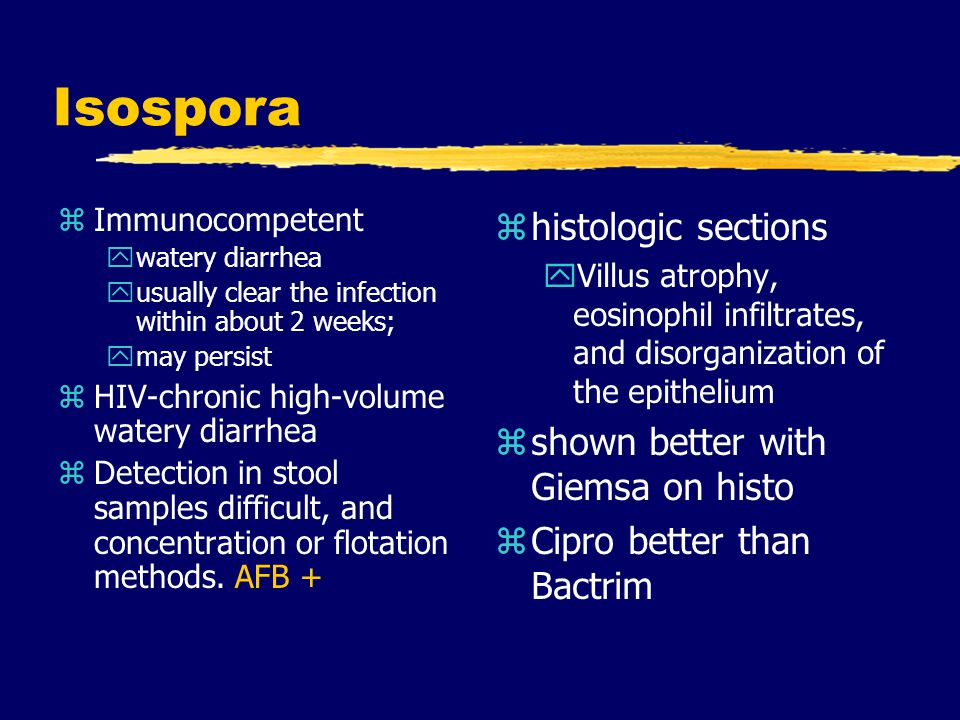 Isospora histologic sections shown better with Giemsa on histo
