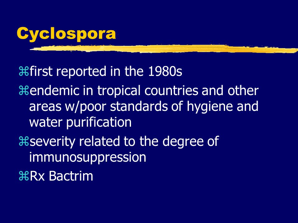 Cyclospora first reported in the 1980s