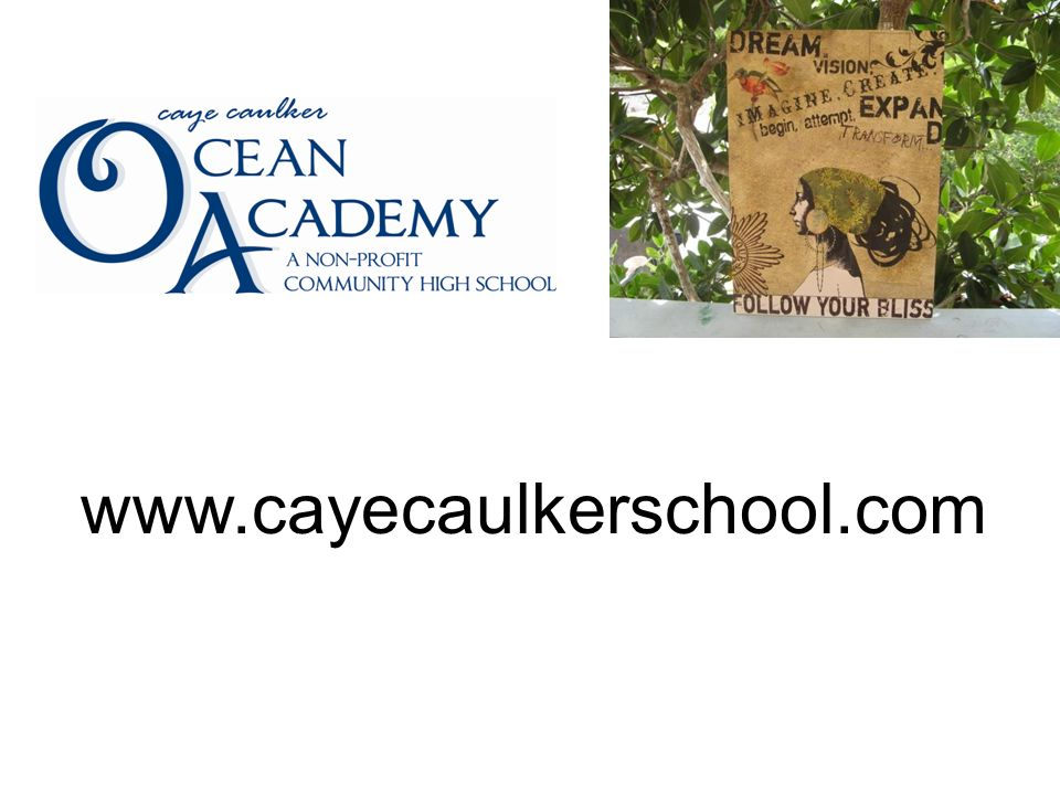 www.cayecaulkerschool.com