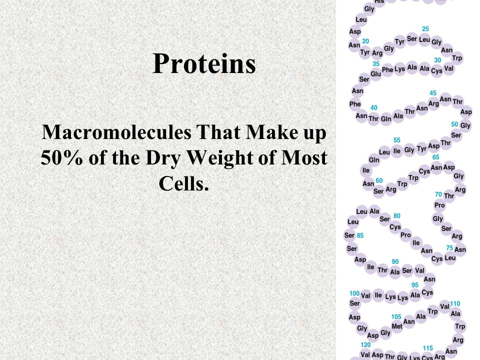 Macromolecules That Make up 50% of the Dry Weight of Most Cells.