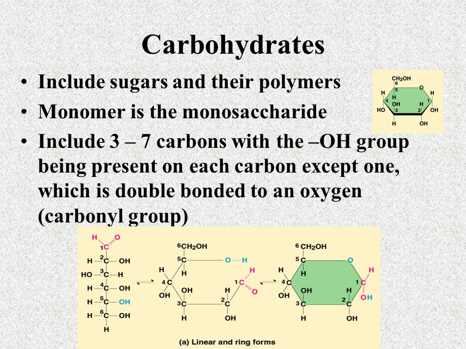 Carbohydrates Include sugars and their polymers