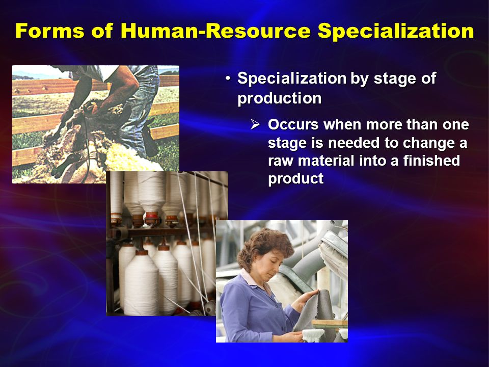 Forms of Human-Resource Specialization