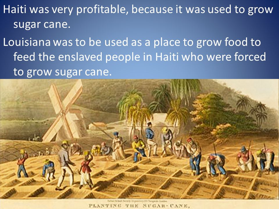 Haiti was very profitable, because it was used to grow sugar cane