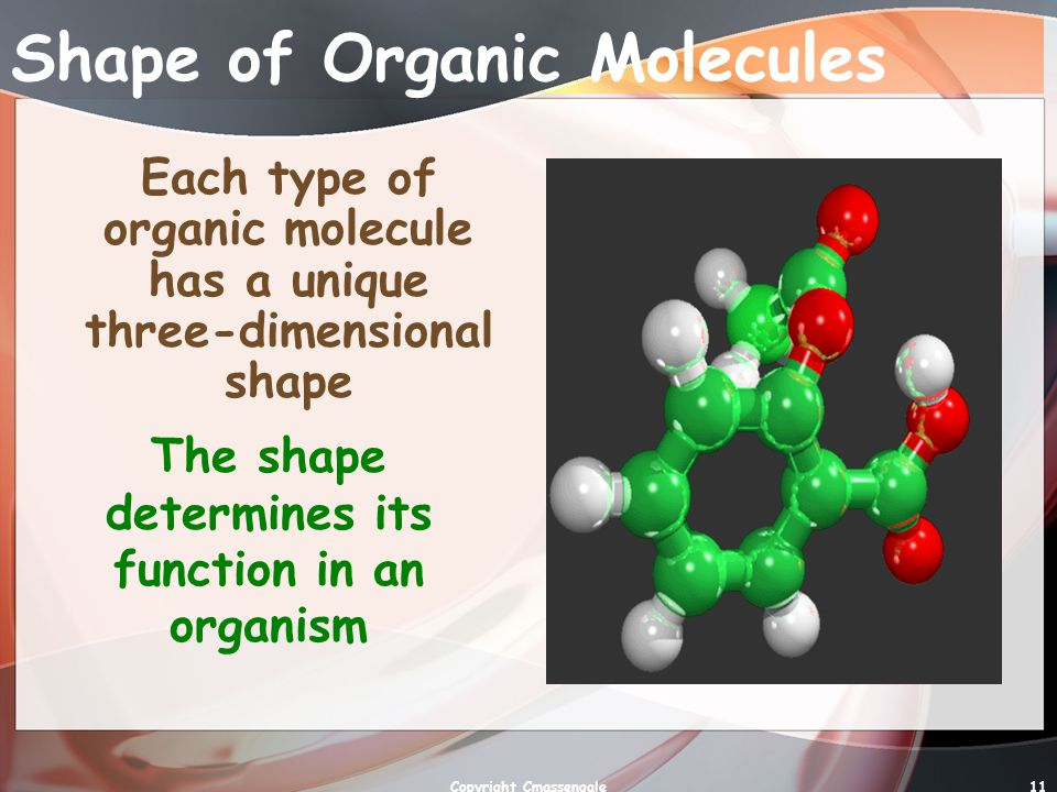 Shape of Organic Molecules