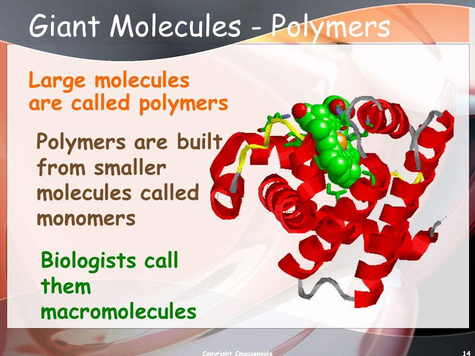 Giant Molecules - Polymers