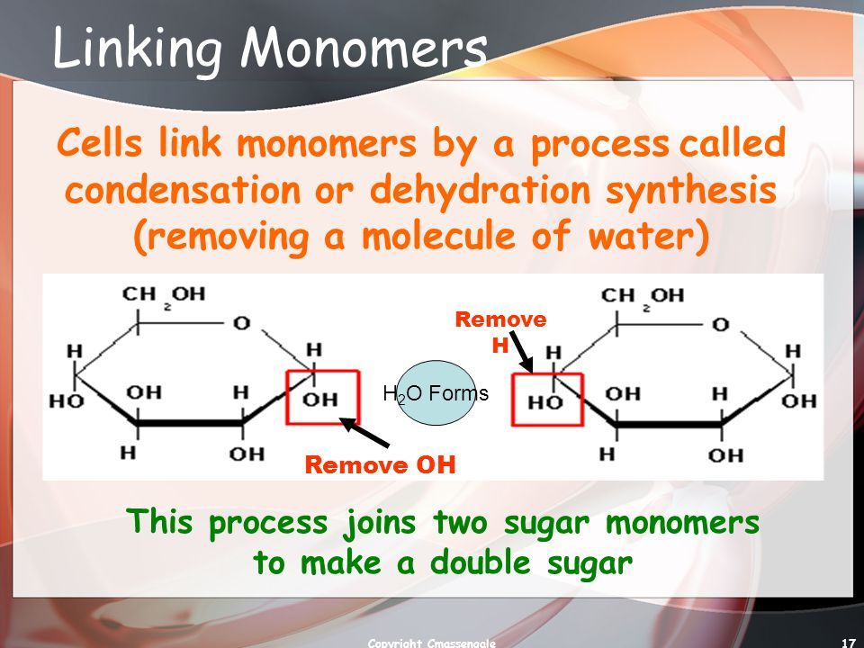 Linking Monomers Cells link monomers by a process called condensation or dehydration synthesis (removing a molecule of water)