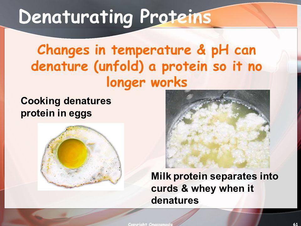 Denaturating Proteins