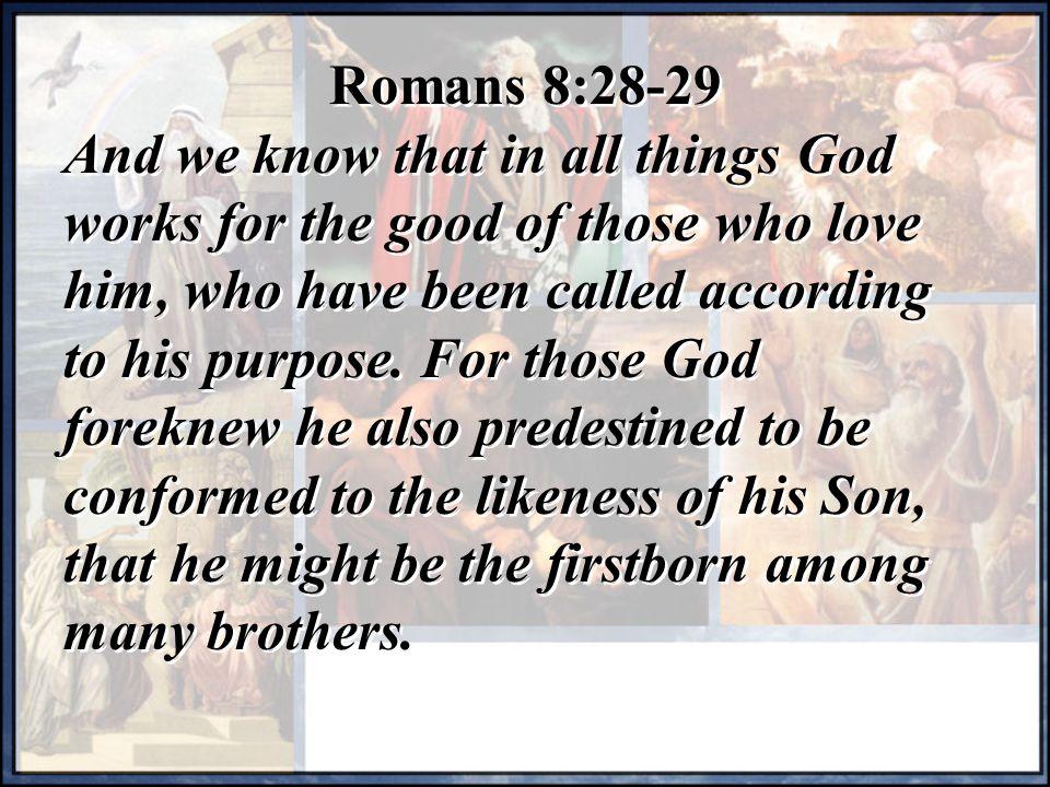 Romans 8:28-29