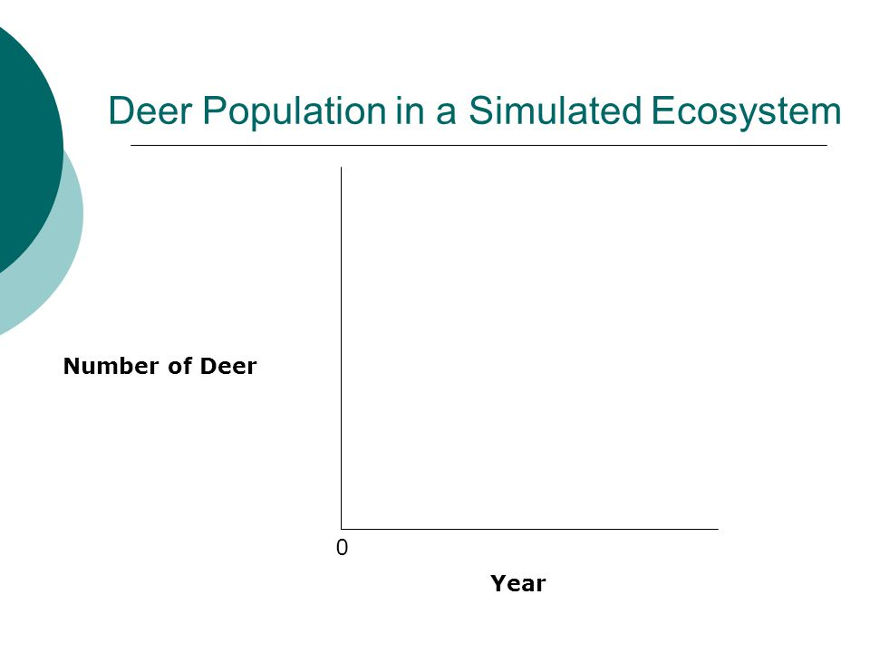 Deer Population in a Simulated Ecosystem