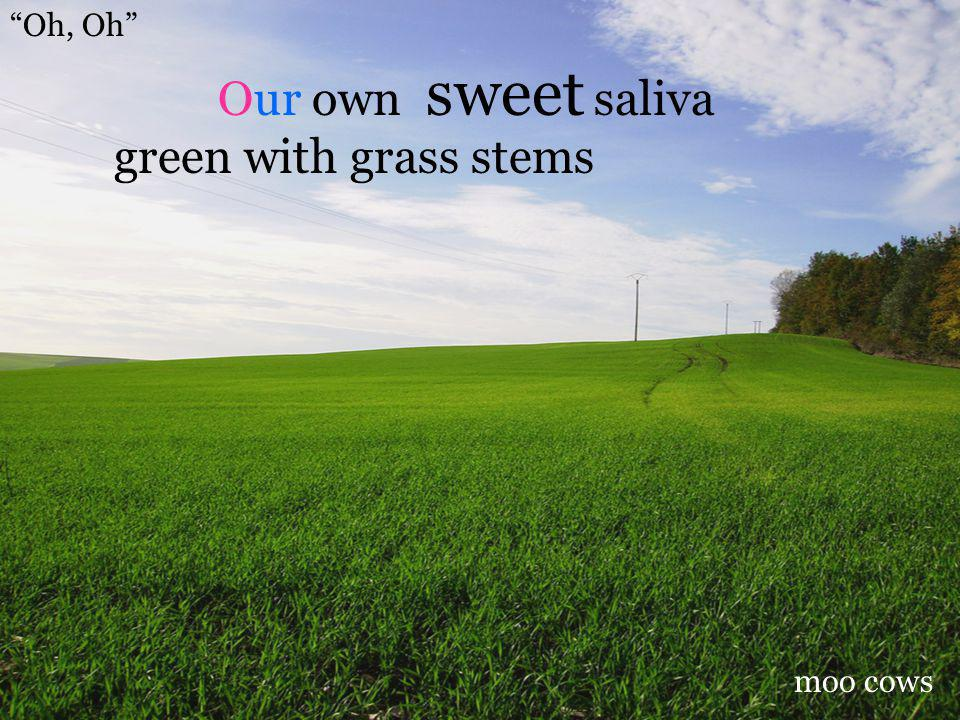 Oh, Oh sweet saliva green with grass stems Our own moo cows