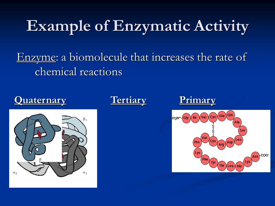 Example of Enzymatic Activity