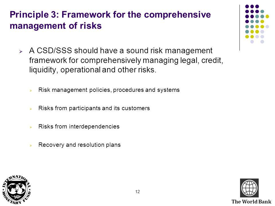 Principle 3: Framework for the comprehensive management of risks