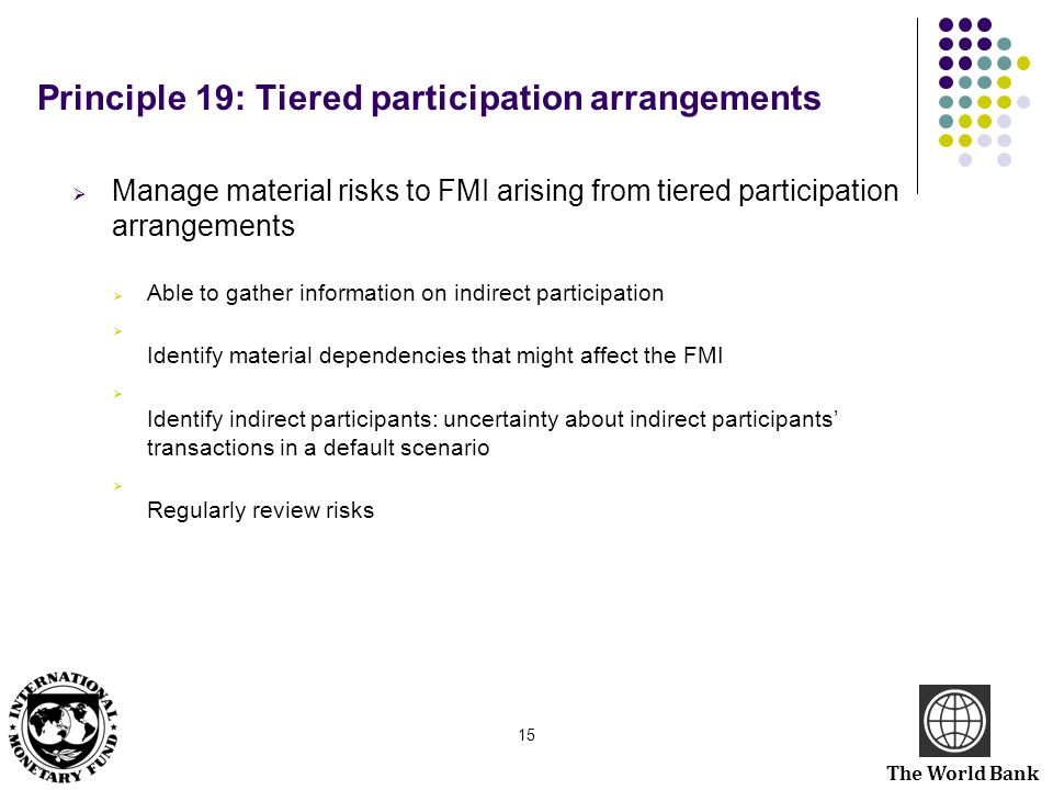 Principle 19: Tiered participation arrangements