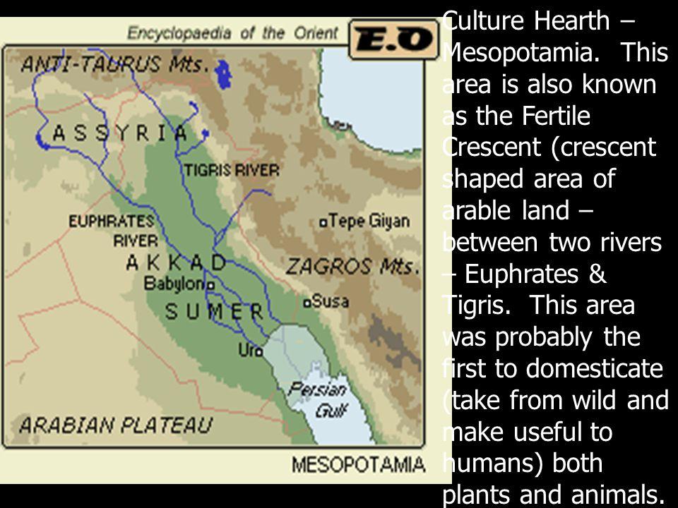 Culture Hearth – Mesopotamia