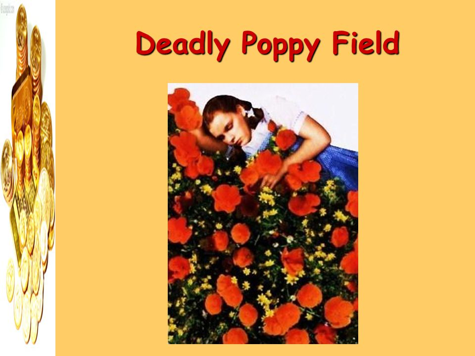 Deadly Poppy Field