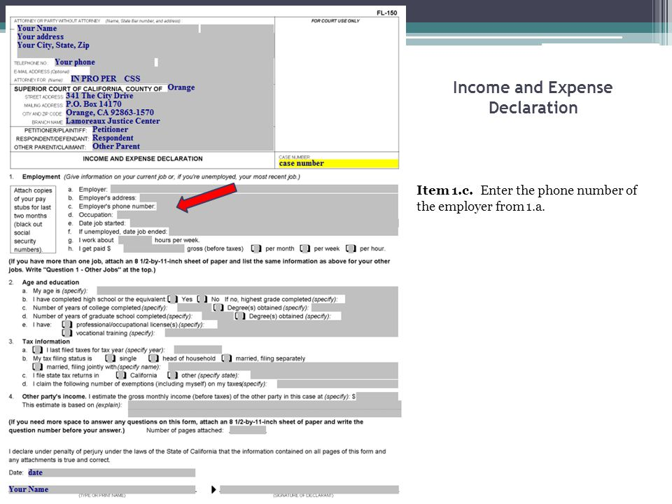 Income and Expense Declaration