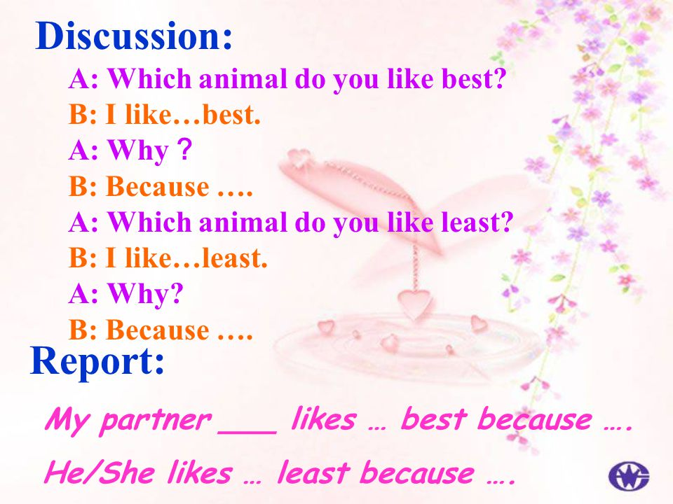 Discussion: Report: A: Which animal do you like best B: I like…best.
